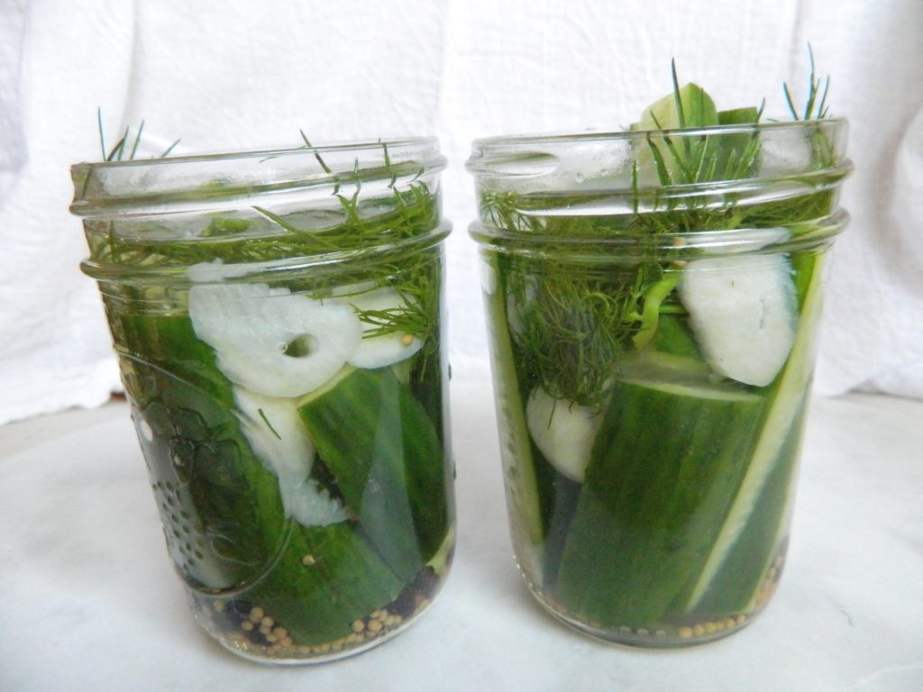 Refrigerator Dill Pickles - finestofsuppers.com
