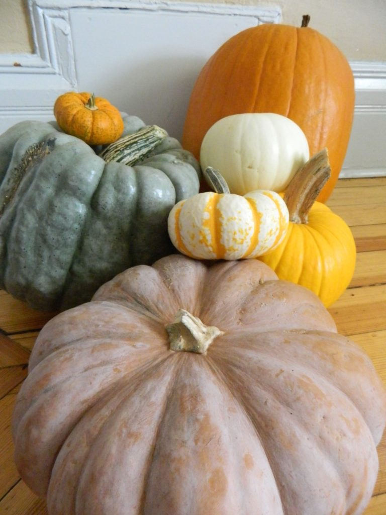 Too Many Pumpkins - finestofsuppers.com